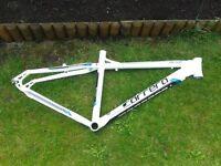 carrera valour mountain bike frame