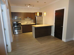 New 2 Bedroom Downtown Location
