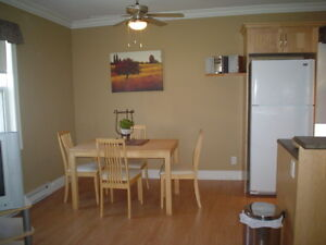 Walk to Mile One!  Gorgeous fully furnished one-bedroom!
