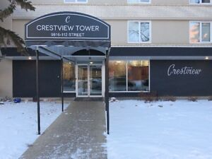 Beautifully Renovated 1 Bedroom Penthouse Downtown