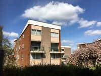 2 bed split level flats in Telford only £300pm for the entire property