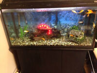 ***80 Gallon fish tank with everything you need!***