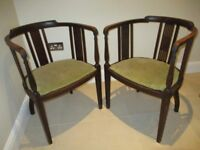 Pair of Edwardian tub dining chairs in fair condition