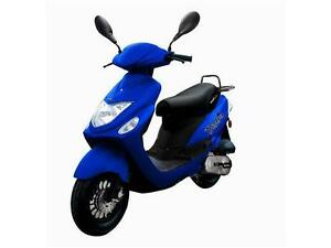 2015 Scootterre Bistro 50 R
