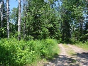 Vacant Land - Corbeil. MPAC Assessment $37000