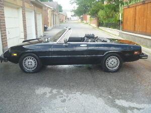1981 Alfa Romeo Spider