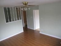 3 Bedroom Main Floor - Park Avenue , Mount Pearl