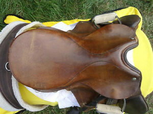 "18.5"" English Saddle Penticton Kelowna image 2"