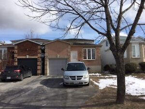 Barrie, 3 bedroom, great renos, utilities included, legal duplex
