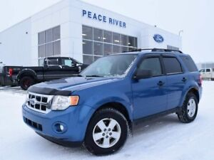 2010 Ford Escape XLT Automatic AWD, 4X4