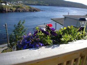 Spectacular St. John's Area 2 Bdr Oceanfront Cottage (Dec-April) St. John's Newfoundland image 7
