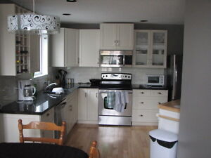 basement for rent find local room rental roommates in