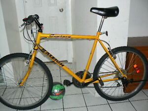 Excellent EXTRA-LARGE Bike -Upto 6 Feet 5 Inch- Raleigh