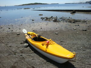 DELTA 10 KAYAK-stable and agile