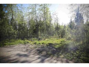 0.7 Acre Lot Just a Short Walk from the Lake