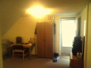 Entire Spacious Basement Sublet. $450/month. Kitchener / Waterloo Kitchener Area image 9