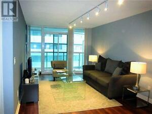 Luxury One plus Den Condo Rental (Furnished)