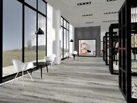 Interior Designer/ 3D Visualiser