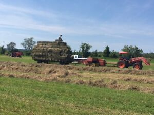 SMALL SQUARE BALES.  $5.00/BALE
