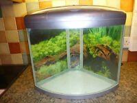 Aqua One UFO 350 Corner Fish Tank / Aquarium