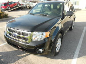 2011 Ford Escape 4X4 XLT V6 (Certified)