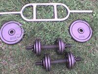 79 lb 37 kg Metal Dumbbell & Barbell Weights - Heathrow