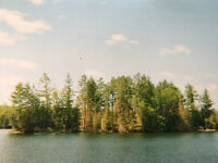 Island on Thanet Lake, just south of Bancroft