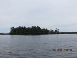 PITCH PINE ISLAND- LOUGHBOROUGH LAKE