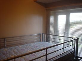 single loft bed