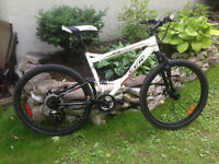 Great Deal on Mountain Bike in EXCELLENT Condition