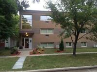 Completely remodelled Large 2 bdrm in St Boniface