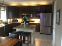 Kitchen Cabinet Spray Painters Toronto GTA