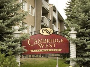 Spacious 2 Bedroom apartment for rent! Weidner !