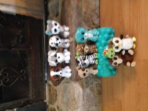 TY Beanie Boo Collection