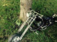 pocket bike excellente condition !!!!!!!