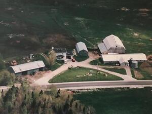 ferme laitière, 2671, Rte 263, Ste-Hélène-de-Chester (ds)