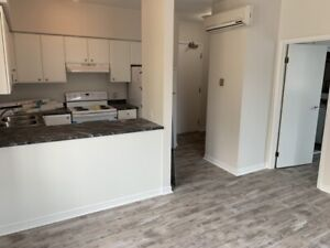 One Bedroom Apartment for Rent in The Heart of Greektown Toronto