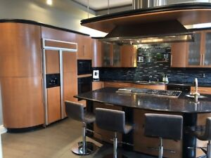 Modern Kitchen Cabinets , Island, Hood Fan and appliances