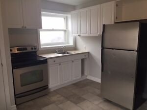Trendy Downtown Apartment~ Fully renovated! ~ Great location