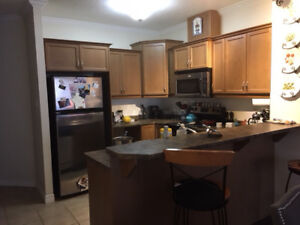 1 Bedroom + Den Condo Downtown London - Fully Furnished