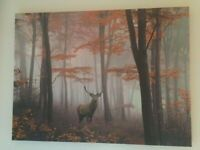 Deer Stag Autumn Forest Canvas Print Picture