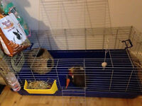Rabbit Cage120cm includes Water bottle,hay holder,nest and some leftover hay,fodder,maxi pack hay