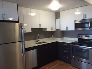 NEWLY RENOVATED ONE BDRM PENTHOUSE FOR JUNE IN NEPEAN!!