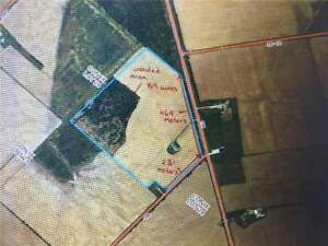 89 ACRES LAND OF ENDLESS OPPORTUNITY