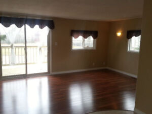 Seller Will Carry Partial Financing. Email Today!