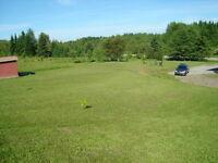 Recherche personne tonte de pelouse (La Trinité-des-Monts)