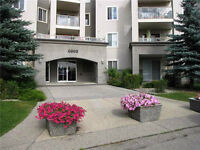 Fully Furnished 2 Beds, 2 Baths & 2 Stalls Close to Somerset LRT