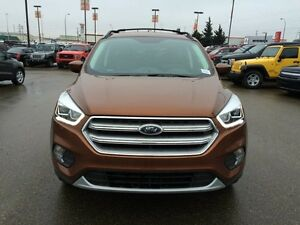 2017 Ford Escape SE Edmonton Edmonton Area image 8