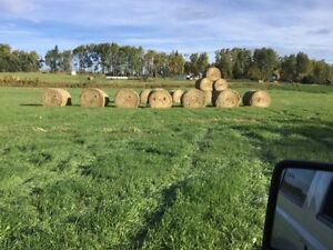 Hay for sale Vanderhoof