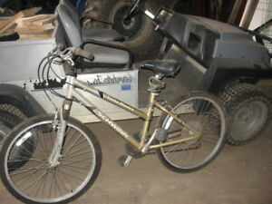 Schwinn 21 speed
